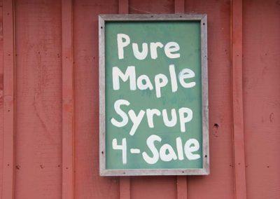maple for sale